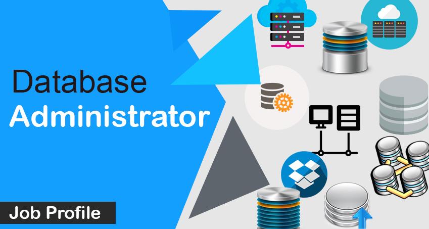Database Administrator  Job Description  Salary  Qualification